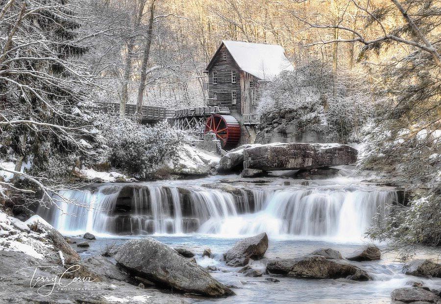 Last Shot of Winter