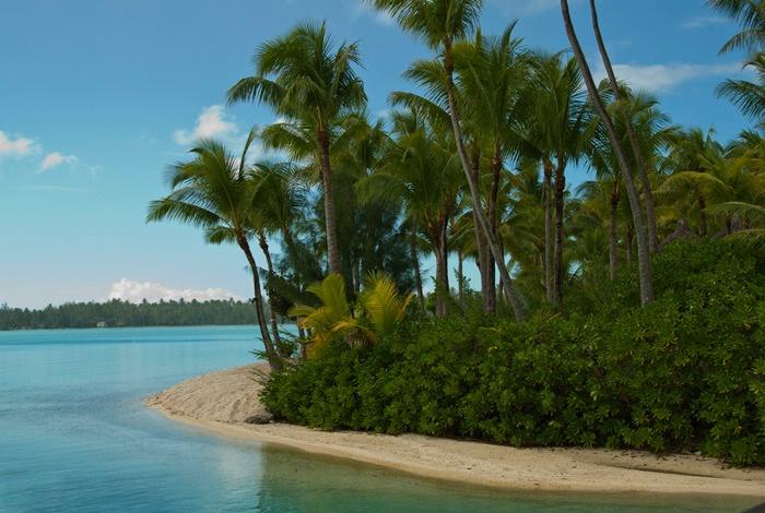 Tropical Waters - ID: 15573400 © Ann H. Belus