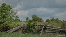 Old Style Fence in Carden Alvar Area, ON