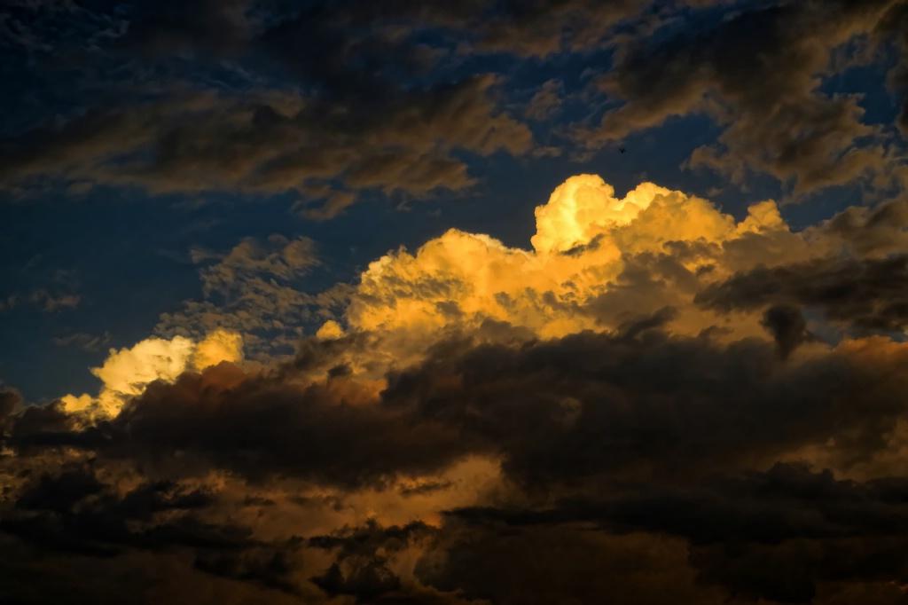 After The Storm - ID: 15620959 © Carolyn  M. Fletcher
