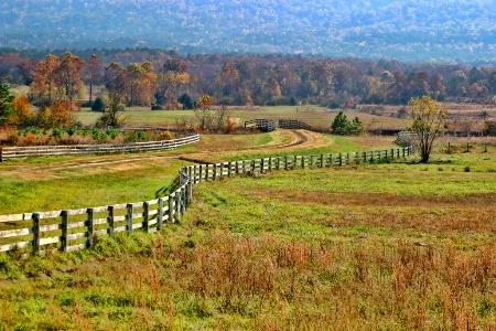 Fall Fencing