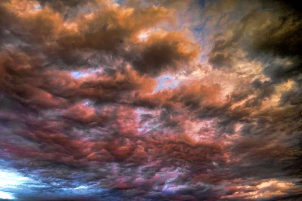 Look Up - ID: 15625393 © Carolyn  M. Fletcher