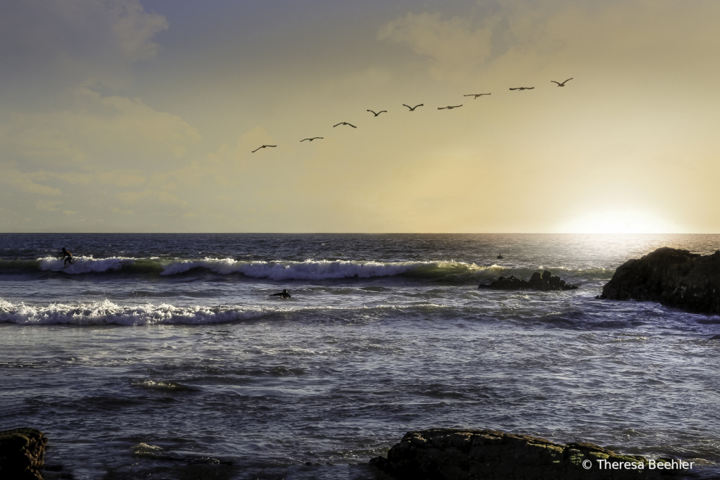 Sunset and birds -- 3 surfers - ID: 15783200 © Theresa Beehler