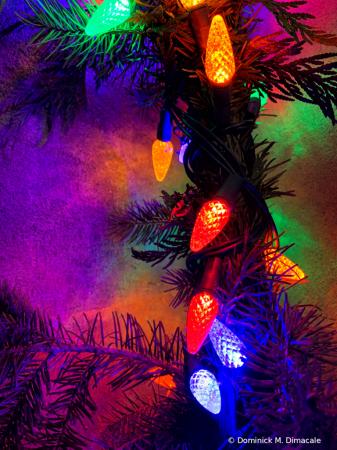 ~ ~ CHRISTMAS LIGHTS ~ ~