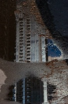 Puddle Reflection in Early Spring