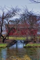 Covered Bridge At Rock Falls