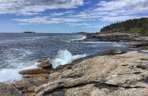 Splash of Maine