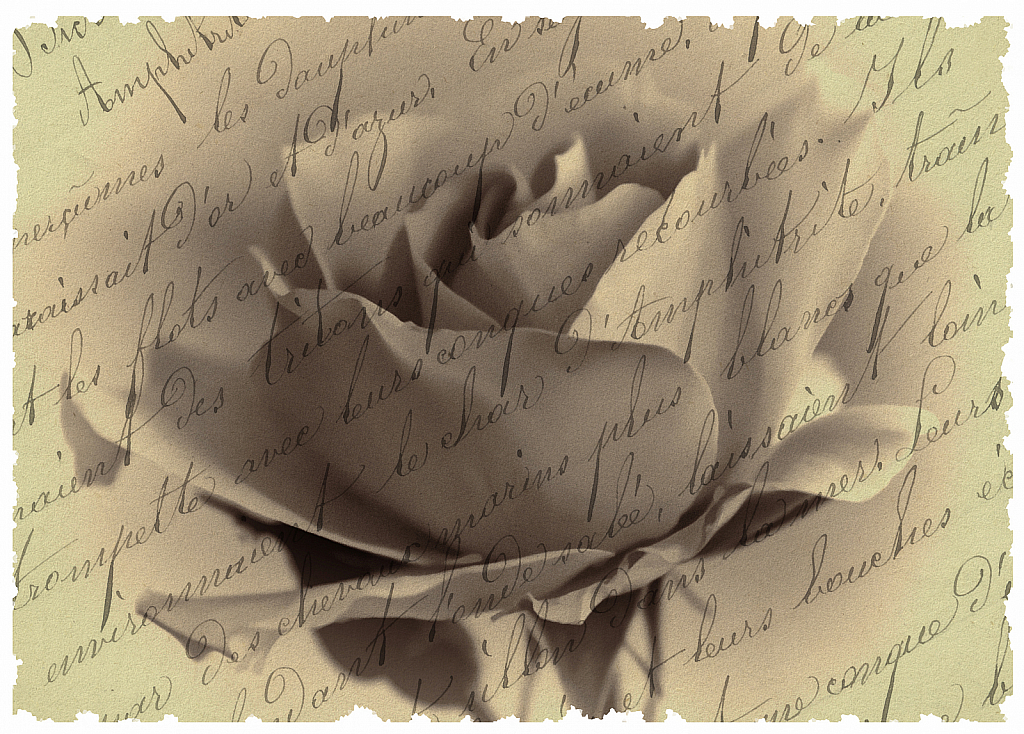 Rose Letters