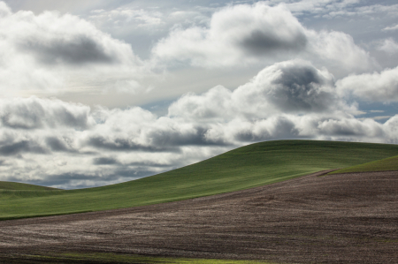 Clouds in the Palouse