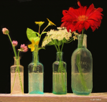 Flowers in Old Bottles