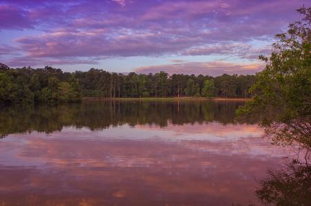 The Pink Morning Sunrise