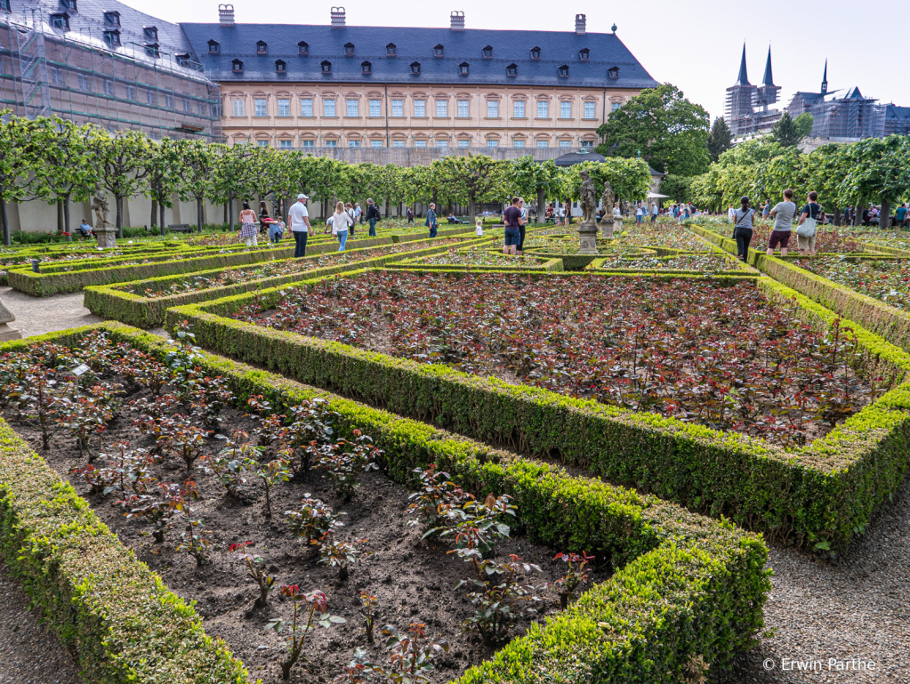 Rose garden  - ID: 15732033 © Erwin Parthe
