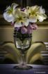 Mazatlan Flowers ...