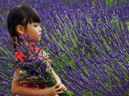 Walking Through Lavender