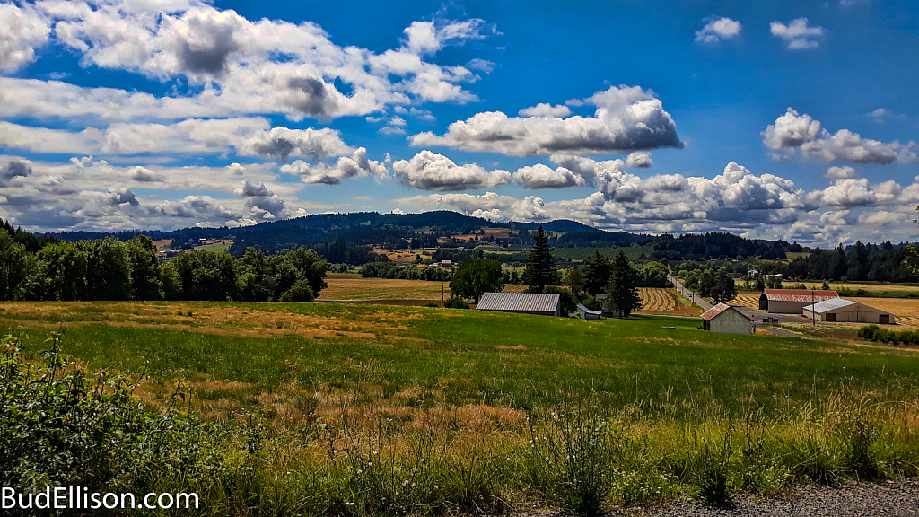 Summer Morning - Yamhill County, Oregon