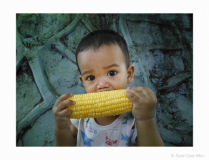 Little Boy With Yellow Corn