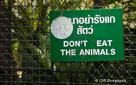 Dont Eat the animals