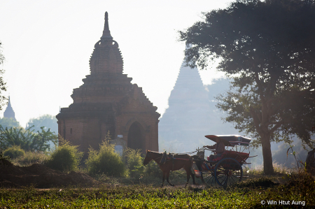 Horse cart at Bagan