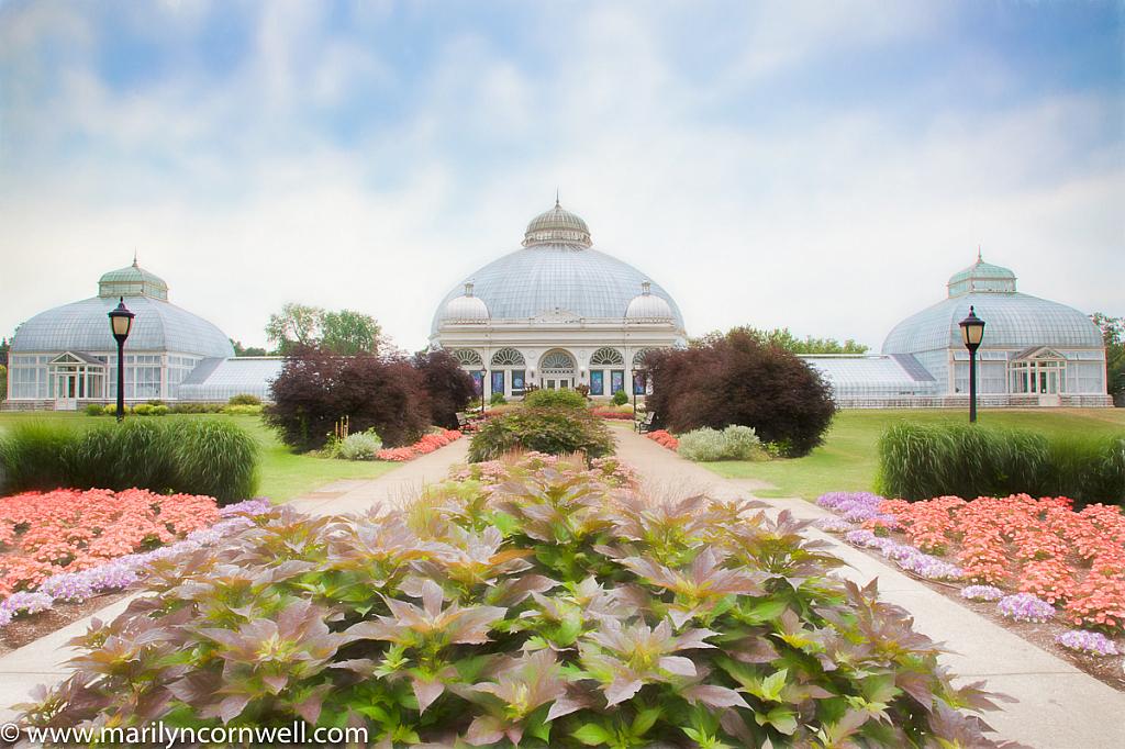 Buffalo's Conservatory - ID: 15734810 © Marilyn Cornwell