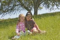 Meadow in Springtime with Best Friends