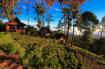Pine Wood Villa