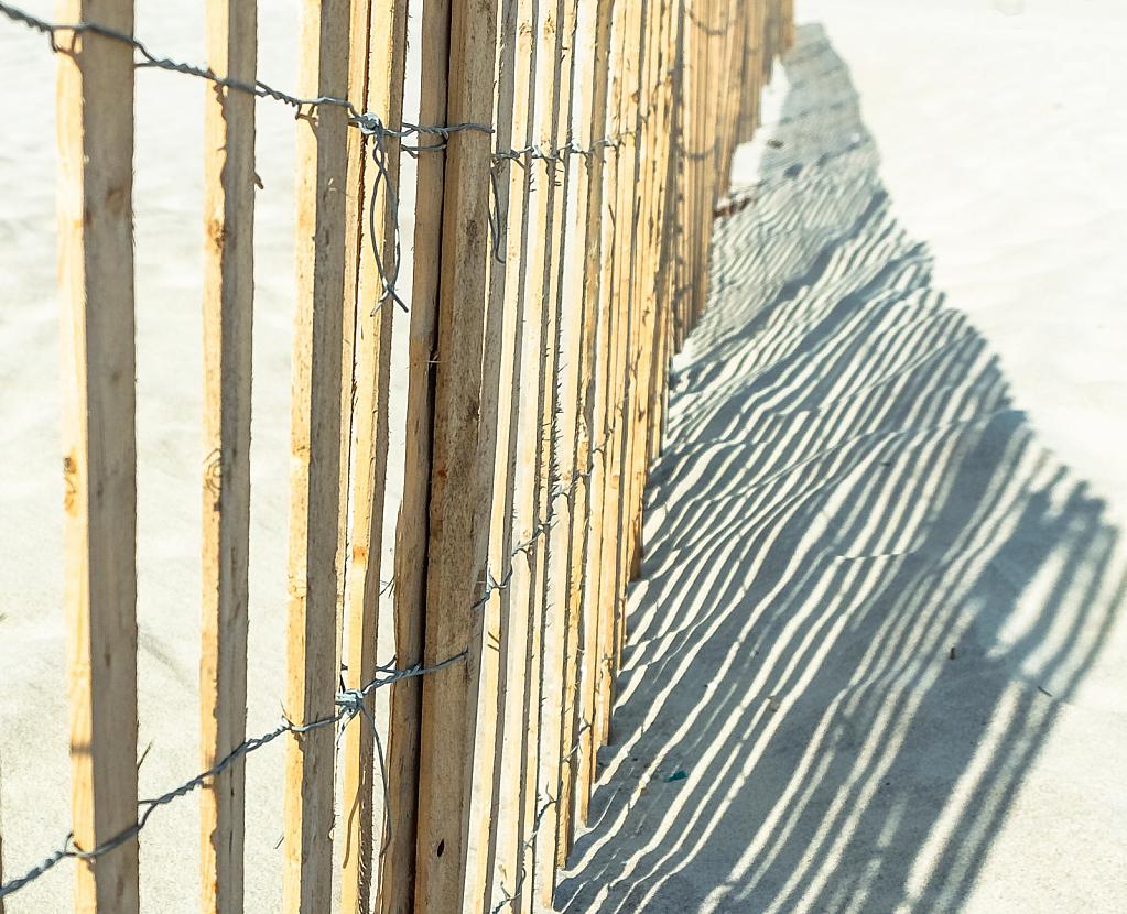 fence lines on a sandy beach