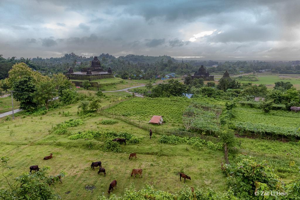 Green land, MraukU