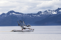 Seining on the Inside Passage