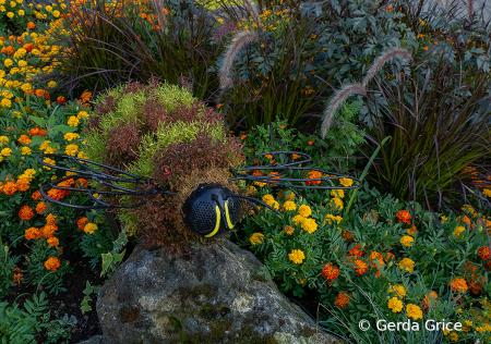 Horticulral Art in High Park, Toronto