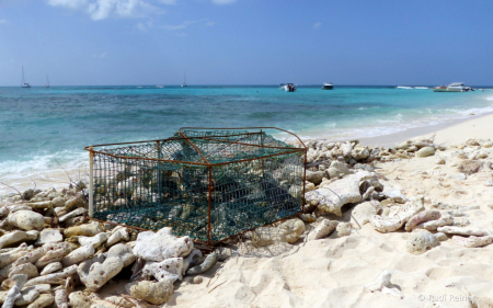 Sandy Island old crab trap, Caribbean