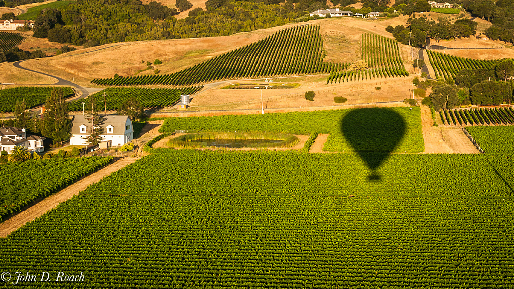 Over the Vineyard - ID: 15738907 © John D. Roach
