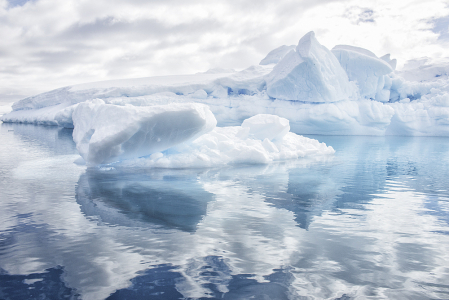 Antarctic Reflections