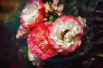 Cosmic Roses