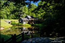 Mabry Mill Summer time Green