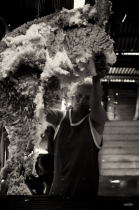 Wool Gatherer