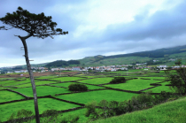 Patchwork of Green Fields