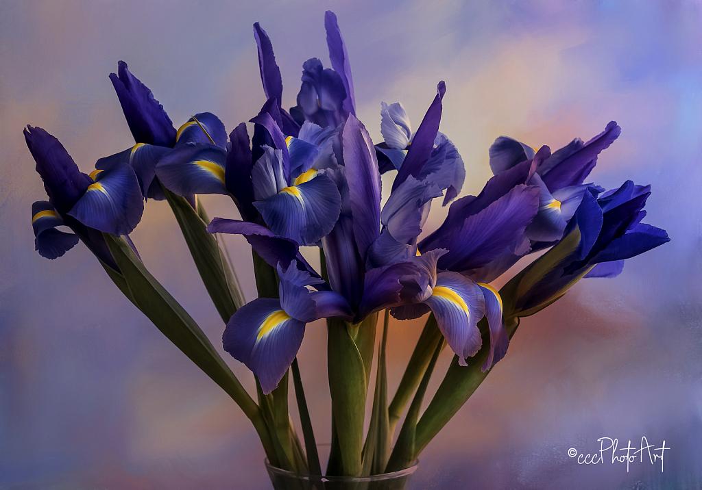 Grace in a Vase - ID: 15742718 © Candice C. Calhoun