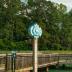 2GQ - Carolina Thread Trail - ID: 15742928 © Zelia F. Frick