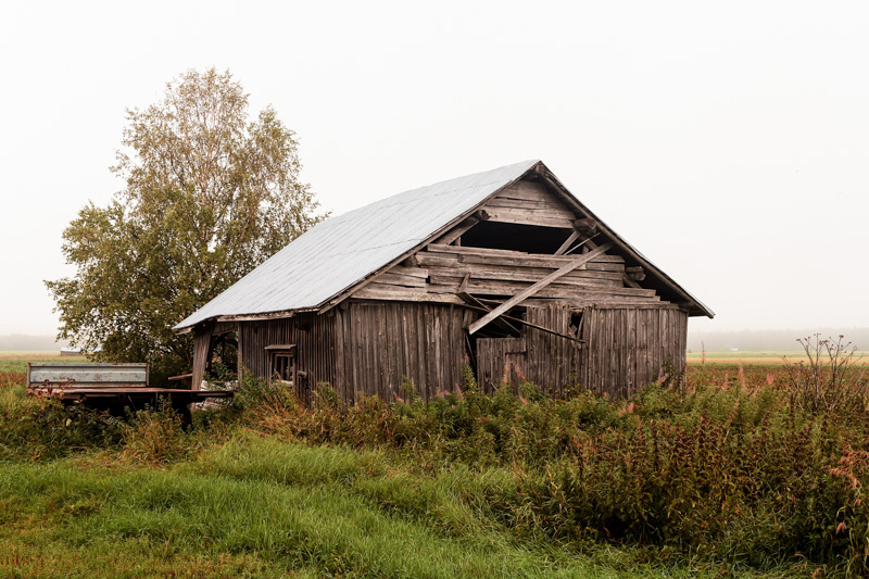 Trailer By The Barn House