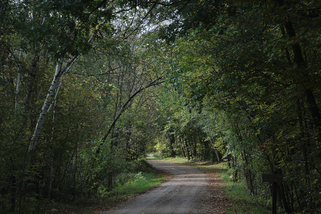 Country Road in September