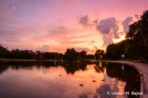 Three Ducks Pond