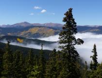 Aspen in Colorado