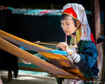 The Pa-Daung Lady
