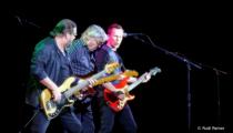 Rockers, Steve Miller band
