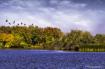 Landscape - Fall ...