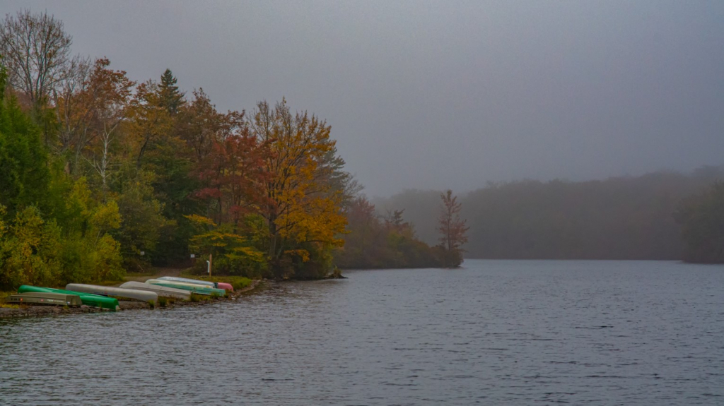 Dreary Autumn Morning