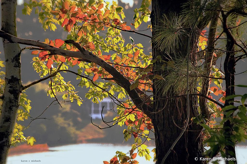 house across the lake - ID: 15753294 © Karen E. Michaels