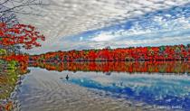 Fall Colors #3