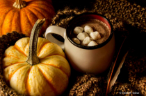 All That Makes Fall Warm & Cozy