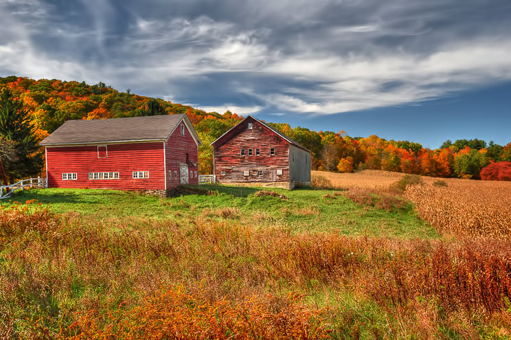 Country Barns In Fall